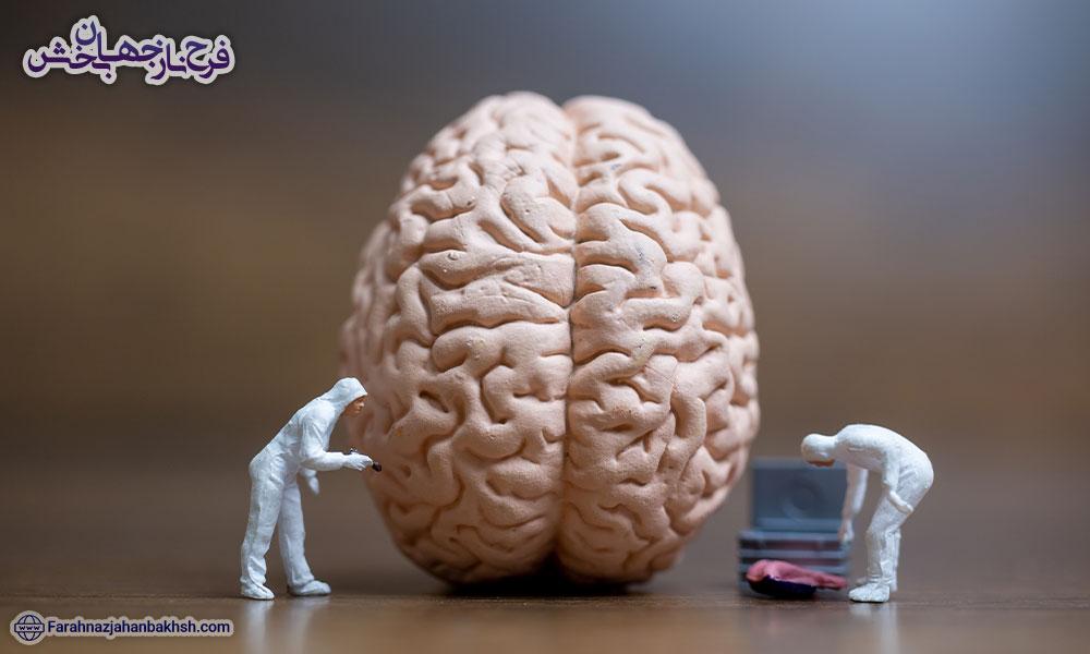 عقل چیست
